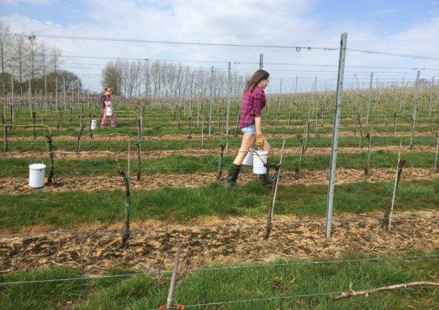 April Blog on Sussex Life…